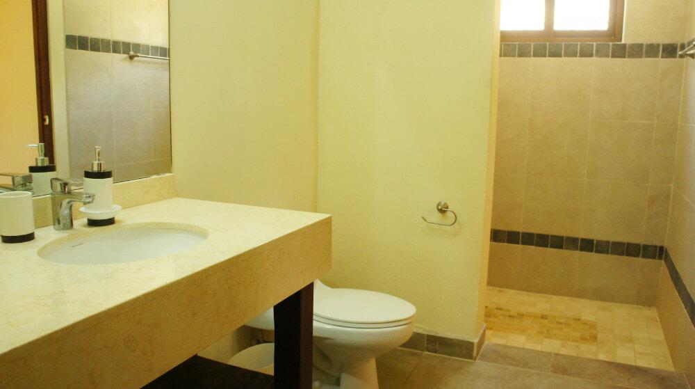 Holmann-House-Bathroom1