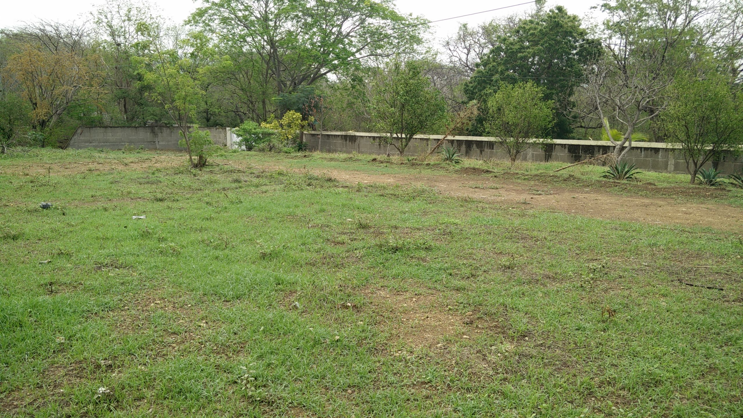 Large Commercial Lot on the Edge of Town