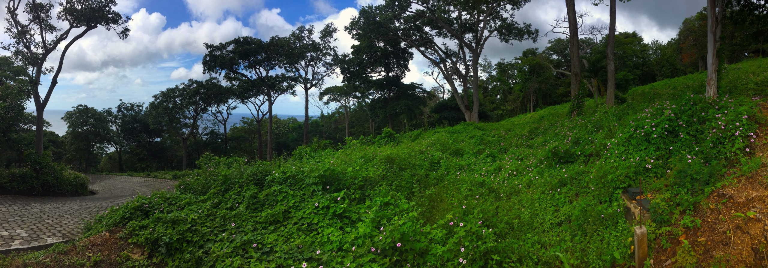 Large Ocean view lot in Costa Dulce