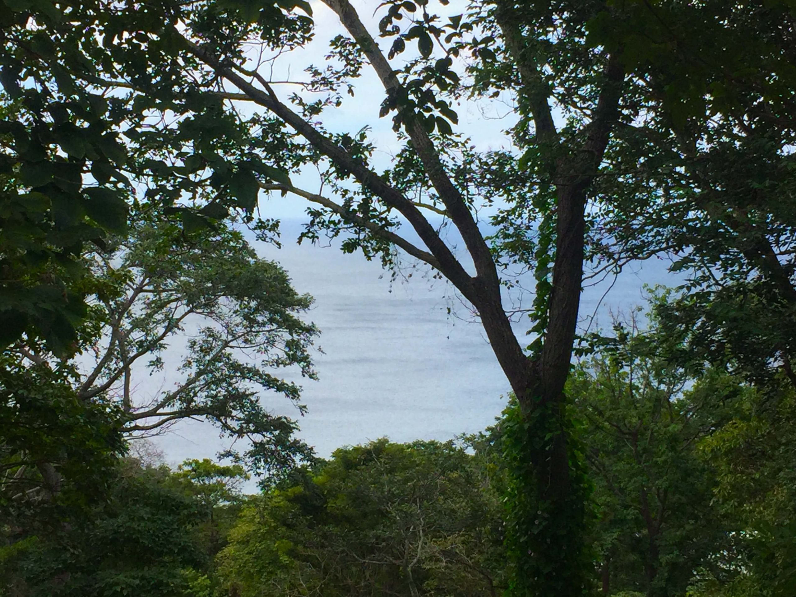 Costa Dulce lot with great Ocean view