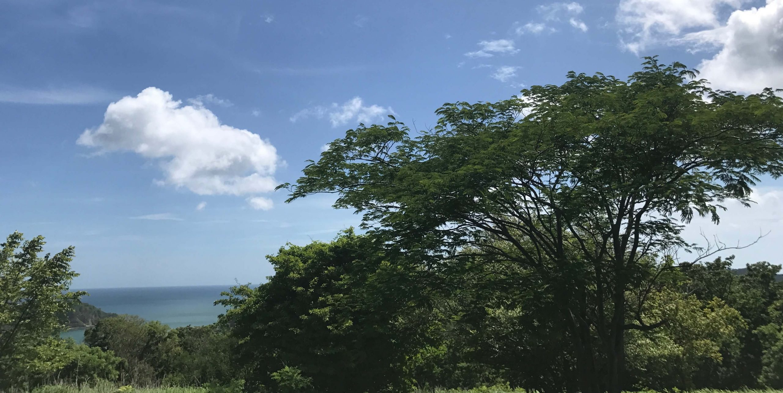 Well-priced Ocean View Lot – Los Miradores