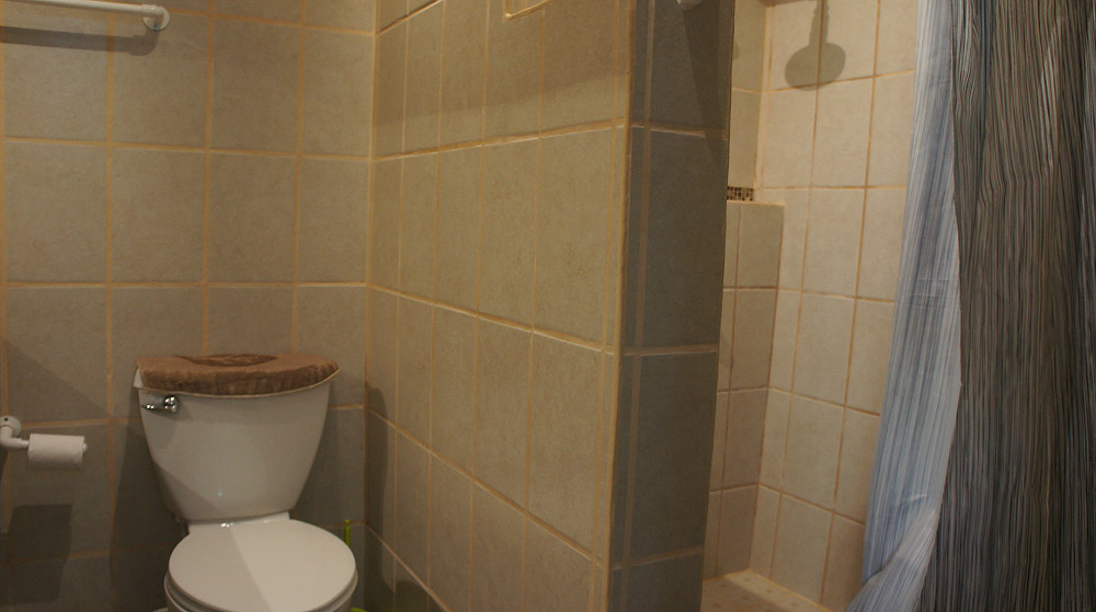 LB-2-Unit-downstaris-Bathroom1